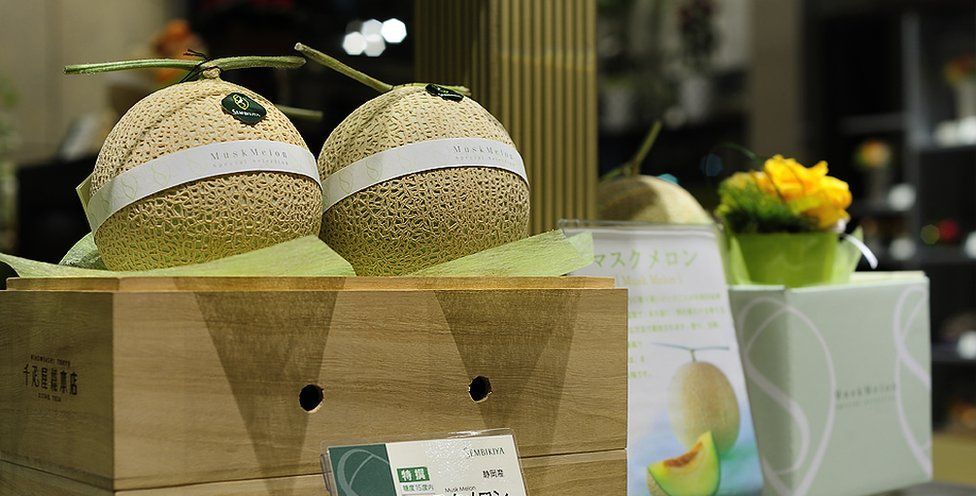 qvvvwzsowux97zajmjs - Most Expensive Fruit Shop in the World