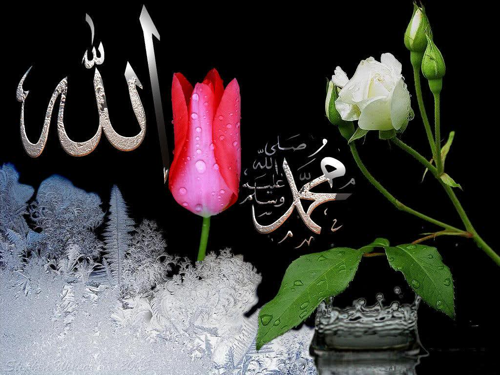 w996qbn0om7jr8h072m - Islamic Comp June 2014